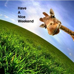 Wish you all a nice weekend - Week end a nice ...