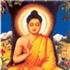 Buddhist Singles