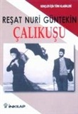 Esin Engin: Goldcrest (Calikusu)