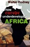 How Europe Underdeveloped Africa walter rodney Book
