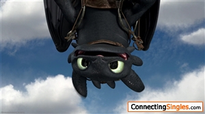 Just a resemblance of Night Fury from the movie How to train your dragon