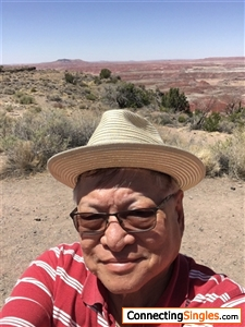 Here I am in the Petrified Forest near the New Mexico Arizona state line