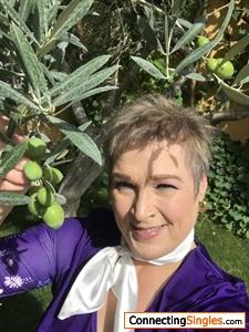 Picking olives in Salamanca Spain