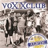 voxxclub: rock mi