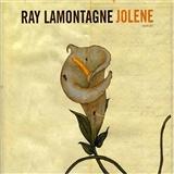 Ray LaMontagne: Jolene