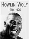 Howlin Wolf: Meet me in The Bottom