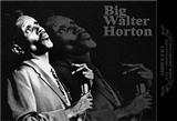Big Walter Horton: Easy