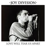 Joy Division: Love will tear apart