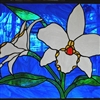 White glass orchid Puzzle
