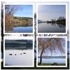 Lake Waihola New Zealand