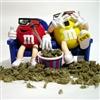M&M Drug bust
