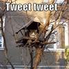 tweet tweet Puzzle