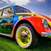 Coloured Beatle