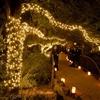 Lighted Arbor