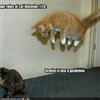 Anti-gravity....