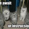 Instructions.....