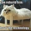 Rebuild.....