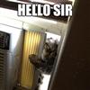 Let me in please
