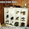 New IKEA Stack-a-Cat....