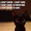 Uncaring cute kitten.....