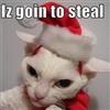 Xmas Cat Burgler......