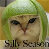 The Silly Season....