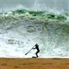 Surf's Up... LOL ......
