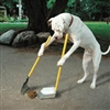 cleanly doggy