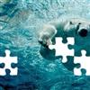 Puzzle 05 Puzzle