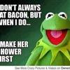 Muppet show Puzzle