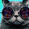 Cool cat Puzzle