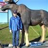 Moose & I