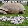 mother ship