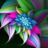 Coloured pic. 2
