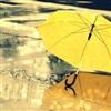 Rain 13 Puzzle