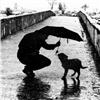 Rain 19 Puzzle