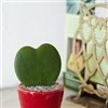 Heart shaped Cactus Puzzle