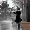 Rain 68 Puzzle