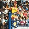 Hulk Hogan Puzzle