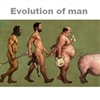 Evolution of man Puzzle
