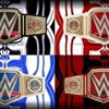 WWE BELTS Puzzle