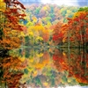 AND THEN CAME AUTUMN Puzzle