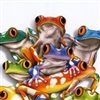 Tree frogs with red eyes Puzzle