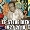 R I P Steve Ditko Puzzle