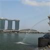 Singapore Puzzle