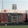 Metropolitan Stadium Puzzle