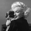 Marilyn Monroe With Her Puppy Puzzle