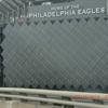 Eagles Stadium Puzzle
