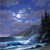 Waves In The Moonlight Puzzle