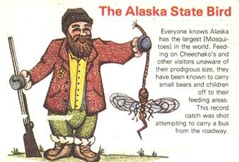 the Alaskan State Bird
